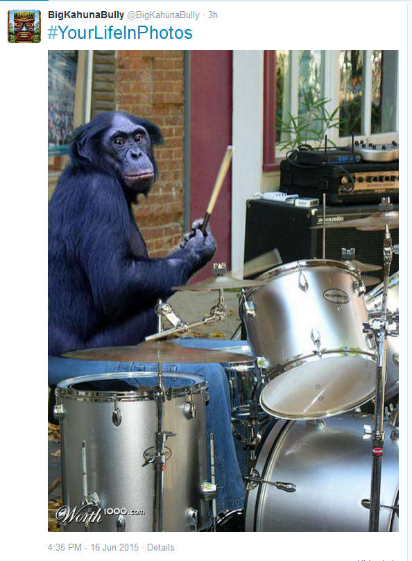 Steve Muto Serial Family Bully Knows A Monkey can play drums better than Steve